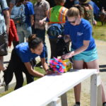 Solar Car Races